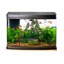 Fish Tank Love Fish Panorama Tank 64 Litre Pets At Home