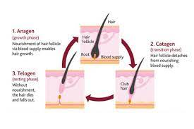 waxing or sugaring appointment