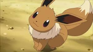 What Are The Different Eevee Evolutions Vaporeon Flareon