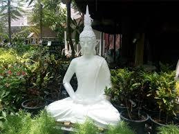 beautiful meditating buddha statue