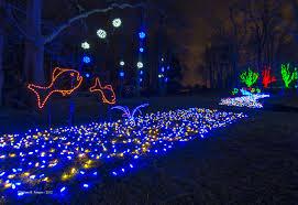 Afbeeldingsresultaat voor winter garden lights