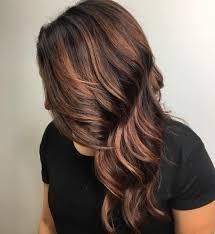 Cinnamon Hair Color Chart Cinnamon Chestnut Brown Hair With Highlights Hair Coloring