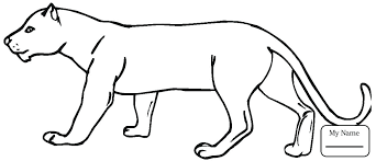 mountain lion coloring page mammals ing mountain lion cougar coloring pages for kids mountain lion coloring mountain lion coloring page