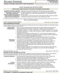 Chief Information Officer Sample Resume Mitocadorcoreano Com