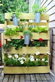 Назад необичайни идеи за цветята у дома напред. Cvetarnik I Pregradna Stena Ot Paleti Gradina 24