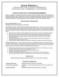 Manager Resume Sample Noxdefense Com