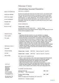 Resume Format For Sales Executive Best Ideas Of Sales Executive