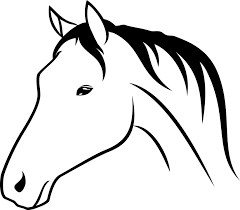 horse head drawing. Delighful Head Animal Horse Head Drawing On Horse Head Drawing A
