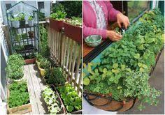 apartment vegetable garden. Delighful Garden 64 Apartment Gardens Balcony  Very Small Ideas Intended Vegetable Garden V