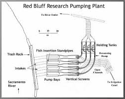red bluff research pumping plant program tracy fish facility schematic diagram of the red bluff research pumping plant red bluff california