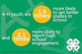 4 h youth development program uc 4 h youth development program 4 h youth are 1 9 times more likely to get better grades in school