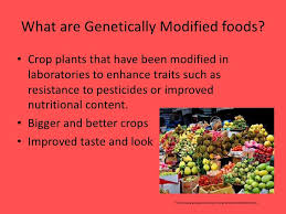 advantages of gm foods co gmo food essay pros cons lab report paper writers