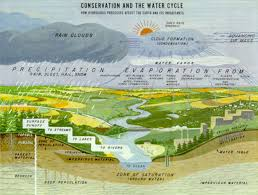 nrcs national water and climate center publication  conservation and the water cycle poster