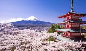 japan trip ile ilgili görsel sonucu