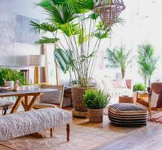 outdoor furniture decor. Full Size Of Outdoor:island Patio Furniture West Palm Beach Tropical Decor Landscape Ideas Large Outdoor T