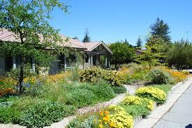 Small Picture Native Plant Garden Design Gooosencom