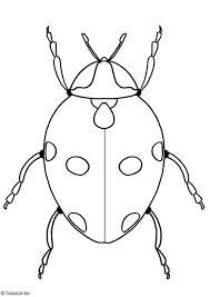 Kleurplaat Lieveheersbeestje Afb 11750 Images