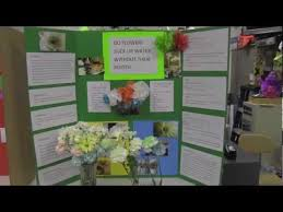 Science Fair Poster Boards