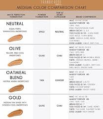 Bairly Sheer Color Chart Matte Perfection Foundation