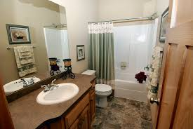 Decorating For Bathrooms Bathroom Decorating The Bathroom Phenomenal Images Inspirations