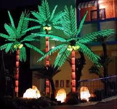 more views tiara palm tree