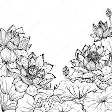 美しいモノクロ ベクトル蓮の花のフレーム ストックベクター