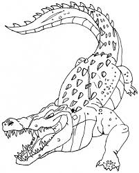 Small Picture Printable Crocodile Coloring Pages Coloring Me