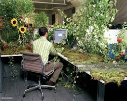 plants for office cubicle. Office Worker At Desk Covered In Plants And Flowers, Rear View : Stock Photo For Cubicle