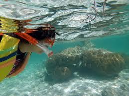 Resultado de imagen para mahahual destrucción de arrecifes