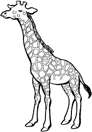 Free Giraffe Coloring Pages Clipart Panda Free Clipart Images