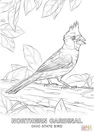 Small Picture Ohio State Bird coloring page Free Printable Coloring Pages