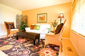Orange And Blue Living Room Orange And Blue Living Room Accessories Home Interior Decorating
