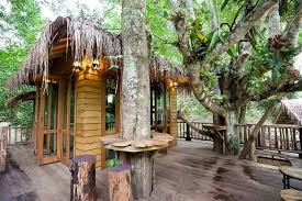 Thailand Tree House  Google Search  Thai Island Inspiration Treehouse In Thailand