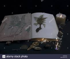 book of shadows with old magical recipe ings for a spell
