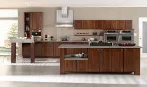 Modern Wooden Kitchen Cabinets Popularity Of Cherry Kitchen Cabinets Kitchen Wood Organizers