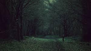 Dark Forest. [3840x2160] : wallpapers