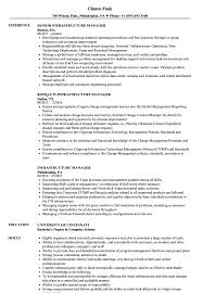 It Program Manager Resumele Full Template Word Cv Doc Executive