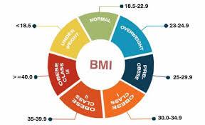 Shape Up America Bmi Chart Bmi Chart Medical Chart Help