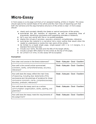 micro essay philosophy of mind micro essay evaluation