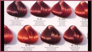 Different Shades Of Red Chart Brand New Red Hair Colors Chart Pics Of Hair Color Thoughts