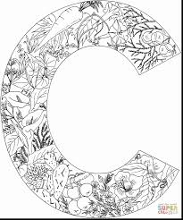 Small Picture astonishing letter c coloring pages dokardokarznet