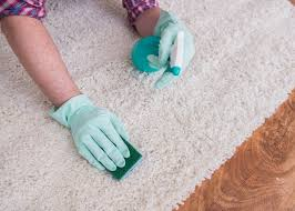 the 5 best carpet cleaner for old pet