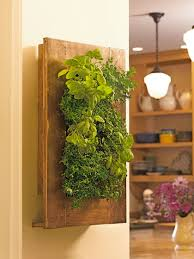 Vertical Kitchen Garden Vertical Wall Garden With Stainless Steel And Mango Wood
