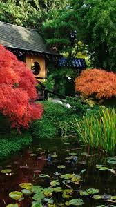 Japanese scenery, garden, pond 750x1334 ...