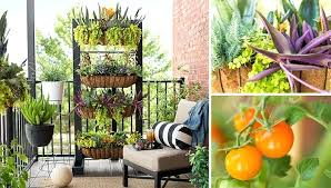 full size of balcony garden with containers and vertical planter rail box cool diy ideas bed