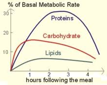 Bmr Levels Chart Basal Metabolic Rate Wikipedia