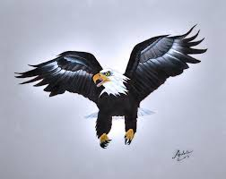 bald eagle painting elliott the eagle by adele moscaritolo