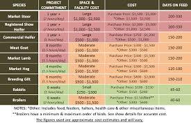 Steer Feeding Chart 4 H Livestock Urban Program Bexar County