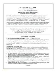 It Consultant Resume Sample Healthcare Consultant Resume Viragoemotion Com