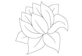 Small Picture Lily Pad without Lily Pad Coloring Page Color Luna